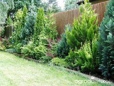 Gardening Tips – How To Garden and Landscape Privacy Fence Landscaping, Hillside Landscaping, Garden Fencing, Garden Paths, Garden Trees, Trees To Plant, Amazing Gardens, Beautiful Gardens, Garden Screening