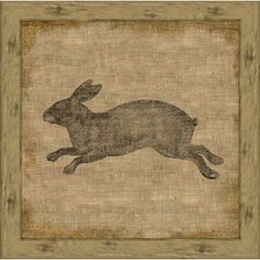 Garden Rabbit II Framed print