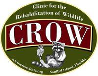 Sanibel Island CROW:  Clinic for the Rehabilitation of Wildlife