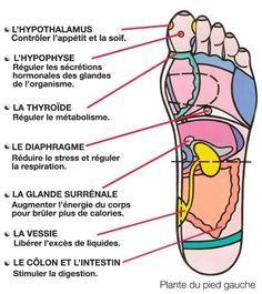 Voici pourquoi se masser les pieds avant de dormir est important, et comment la réflexologie plantaire peut agir contre le stress et l'anxiété.