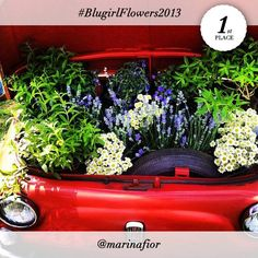 "#BlugirlFlowers2013 contest And the WINNER of the #BlugirlFlowers2013 Instagram Contest is @marinafior! The Blugirl young, stylish and playful mood is flawlessly rendered by the Fiat 500 car, with sweet daisies both recalling he Blugirl girl's romantic side and interpreting the ""Stylish Flowers"" theme. Congratulations!"
