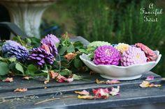 {DIY} un bouquet de zinnias avec des pommes de pin !