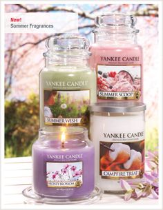 New Yankee Candle Fragrances Bougie Scents Jars