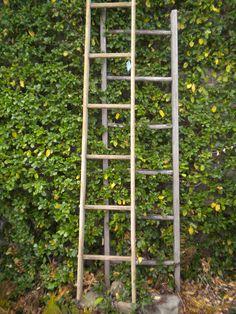 Vintage wooden farm ladders
