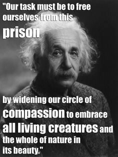 Our task must be to free ourselves from this prison by widening our circle of compassion to embrace all living creatures and the whole of Nature in its beauty. - Albert Einstein Quotes 21