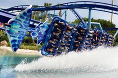 Manta at Sea World! Probably the BEST ride there!!!