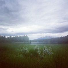 En Suède aux portes du grand nord  #voyage #Travel #montagne #north by chris_voyage #travel