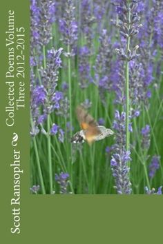 Collected Poems Volume Three 2012-2015 by Scott Ransopher https://www.amazon.com/dp/1539577104/ref=cm_sw_r_pi_dp_x_qSJbybV8YC7WN