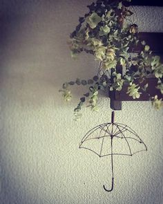 ~花の雨~ 今日の朝は大雨でした☔ 私はくせ毛なので雨は苦手なのです😱 でもこんな雨なら嬉しいな🙌 オレガノケントビューティーのお花のような雨😊 雑貨で物語を作るのも好きなのです💕💕 大好きなlemontreeさんのワイヤークラフト🌂 #lemontree#ワイヤークラフト#傘 #オレガノケントビューティー #インテリア#雑貨#針金細工 #花の雨#インテリア雑貨 #ドライフラワー