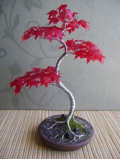 Heritage #bonsai Japanese Red Maple Steel Tree by HeritageBonsai #bonsaitrees