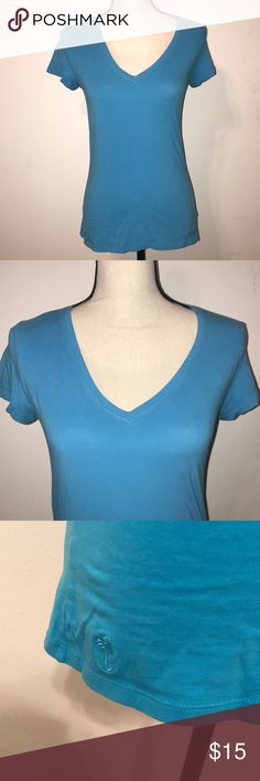 Lilly Pulitzer basic blue Vneck tee Lilly Pulitzer basic blue Vneck tee Normal wash and wear Lilly Pulitzer Tops Tees - Short Sleeve