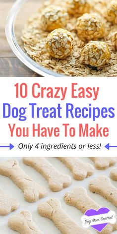 These easy dog treat recipes come together in a matter of minutes and only require four ingredients or less! Get inspired with 10 easy recipes.