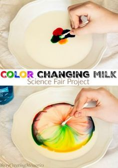 quick and easy Color Changing Milk Science experiment. A great way to discover the bond of molecules for a simple science Fair Project Idea