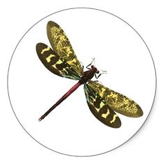 Dragonfly ~ Dragonflies Flying Insect Stickers. Zazzle.com