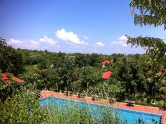 Memoria Palace provides travelers a little luxury in the Cardamom Mountain countryside.