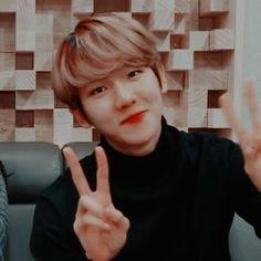 엑소🍸🍁Exo — kyotoedits: ♡ if save/use ❤ Red Aesthetic, Aesthetic Photo, Chanbaek, Baekhyun, Lucky Ladies, Twitter Layouts, Kpop Exo, Exo Members, Actor Model