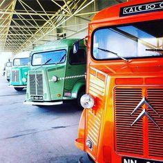 Citroen Van, Citroen Type H, French Classic, Classic Cars, Peugeot, Citroen Traction, Antique Trucks, Car Brands, Commercial Vehicle