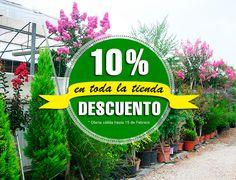 Ha llegado la hora de nuestra oferta especial! Hasta el 15 de Febrero podéis disfrutar de un 10% de descuento en toda nuestra tienda online y física.  http://jardineriakuka.com/  Estamos en la Autovía 340, Km 366, Alginet, Valencia (46230)