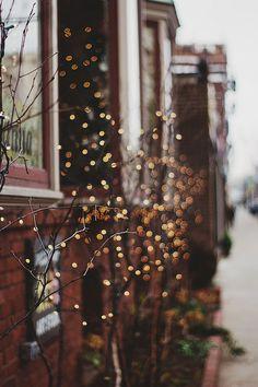 Bokeh Goodness | by Kristybee
