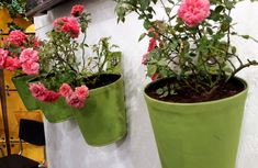We are currently at spoga+gafa in Germany and this is a sneak peek of how our stand looks with the Green Pot!  #bloomingwalls #thegreenpot #green #garden #gardening #verticalgardening #roses #pinkroses #plants #flowers #pink #colours #wallplanter #spogagafa