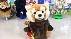 If you think you knew which one is your favorite animal, you may want to think again! Watch this clip, find out some cool fun facts about the life of these a. Youtube Banners, Red Panda, Pet Toys, Fun Facts, Cute Animals, Teddy Bear, Artists, Dogs, Pretty Animals