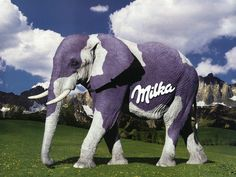 Milka (chocolate) Elephant! The best one!