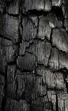 Black 黒 Kuro Nero Noir Preto Ebony Sable Onyx Charcoal Obsidian Jet Raven Color Texture Pattern charcoal Raven Color, Art Texture, Dark Wood Texture, Grain Texture, Charred Wood, Estilo Rock, Black Gold Jewelry, Stock Foto, Shades Of Black