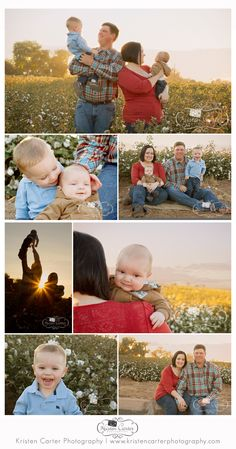 Family Session in a cotton field at sunset.  Tags: golden hour, family photos, baby, brothers, posing, Kristen Carter Photography