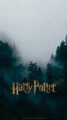 Harry potter love