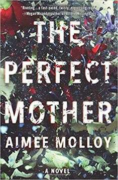 AmazonSmile: The Perfect Mother: A Novel (9780062696793): Aimee Molloy: Books
