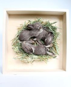 RESERVED FOR NIKKINeedle Felted Baby Rabbits Shadowbox