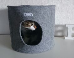 Katzen Zubehör Weiß Rund Bett Graue Katze | Tiere Und Haustiere | Pinterest