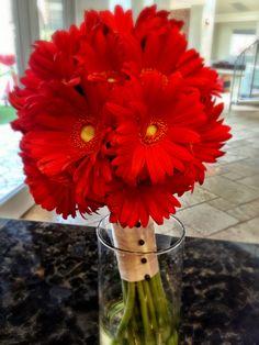 Simple gerbera daisy bouquet