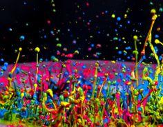 paint splatter color colorful colors colours colour