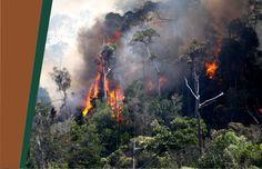(angkaza.com)Musim kemarau memang belum tiba, tetapi Pemerintah Provinsi Sumatera Selatan (Sumsel) melalui Badan penanggulangan Bencana Daerah (BPBD) sudah melakukan persiapan penanggulangan keba…