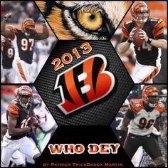 2013 Cincinnati Bengals