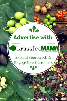 Advertise with Us: Expand Your Reach and Engage New Customers - Grassfed Mama