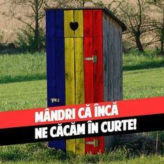Inca, Funny Pictures, Funny Pics, Comedy, Humor, Memes, Outdoor Decor, Sad, Random