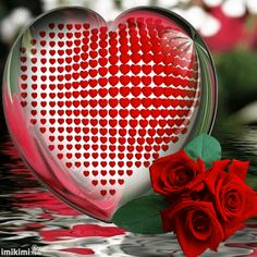 Happy Valentine Day 2018 Quotes,Ideas,Wallpaper,Images,Wishes: Valentines Week Days Romantic Night Party Ideas Staus Dp for Lovers