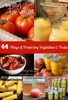 44 Ways of Preserving Vegetables and Fruits - Save money by preserving your own!  http://kouponkrazed.com/2014/06/44-ways-preserving-vegetables-and-fruits/