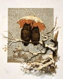 Owls under an umbrella in the snow in a Christmas card