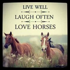 Live well, laugh often, love horses