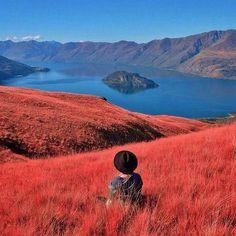 Lake Wanaka, Minaret Bay, Neuseeland - von Wings of a Feather - Honeymoon Hochzeitsreise Flittern Visit New Zealand, New Zealand Travel, Places To Travel, Places To See, Beautiful World, Beautiful Places, Papua Nova Guiné, New Zealand Adventure, Lake Wanaka