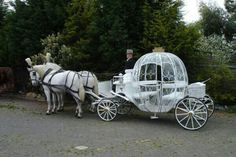 Cinderella horse drawn carriage wedding transport for the bride