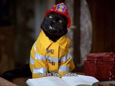 47 Reasons Salem From 'Sabrina The Teenage Witch' Is Your Spirit Animal Sabrina Cat, Salem Cat, Salem Saberhagen, Sabrina Spellman, Your Spirit Animal, Cat Quotes, Looking For Love, Halloween Cat, Reaction Pictures
