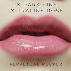 LipSense distributor #228660 @perpetualpucker Dark Pink and Praline Rose