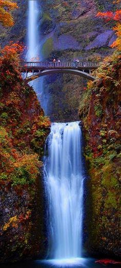 Multnomah Falls, Oregon *someone take me here*