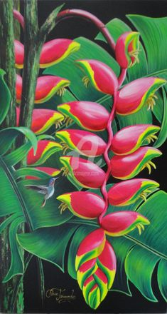 Painting by Rose Fernandes (Brazil) Tropical Flowers, Tropical Art, Exotic Flowers, Beautiful Flowers, Tropical Paintings, Jungle Art, Botanical Art, Beautiful Paintings, Flower Art