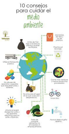 10 consejos para cuidar del medio ambiente en Blog de Educación y Pedagogía - tekman Books