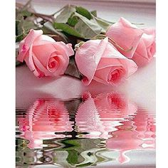 $3.89  - Smartcoco 5D DIY Diamond Painting Pink Rose Wall Sticker 3D Diamond Mosaic Cross Stitch Embroidery 30X40CM *** To view further for this item, visit the image link. (This is an affiliate link) #WallStickersMurals